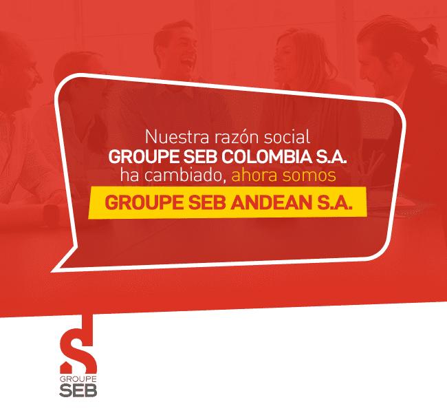 Banner de Group SEB
