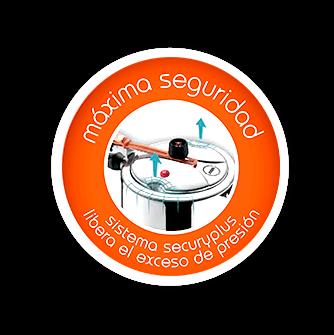 Logo de inox secury